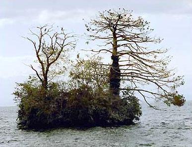 Остров Саланьон