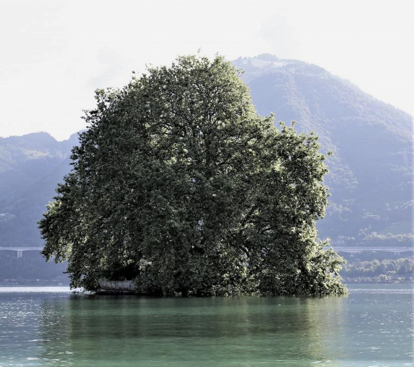 Остров Пэ 1